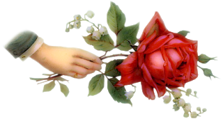 0-virág-kez_es_rozsa